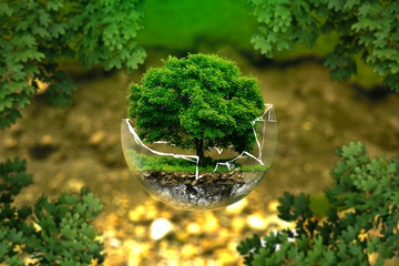 Pix Green Earth