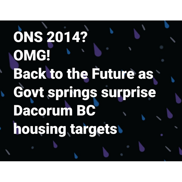 ONS2014? OMG! Back to the Future as Govt sprigs surprise Dacorum BC housing targets